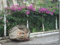 Antigua Sept 2008 046